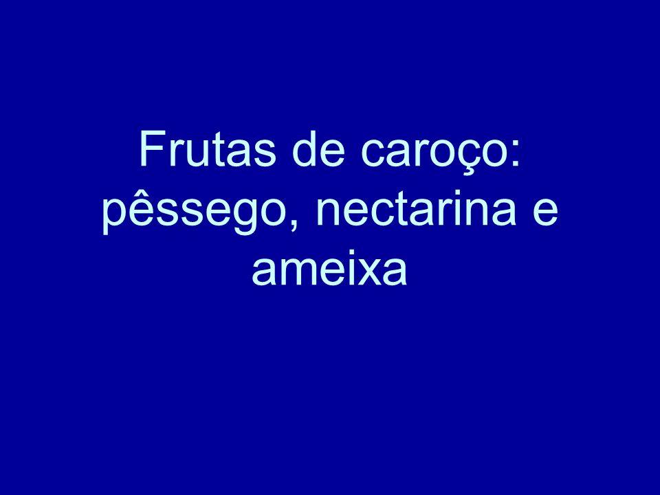 Frutas de caroço: pêssego, nectarina e ameixa