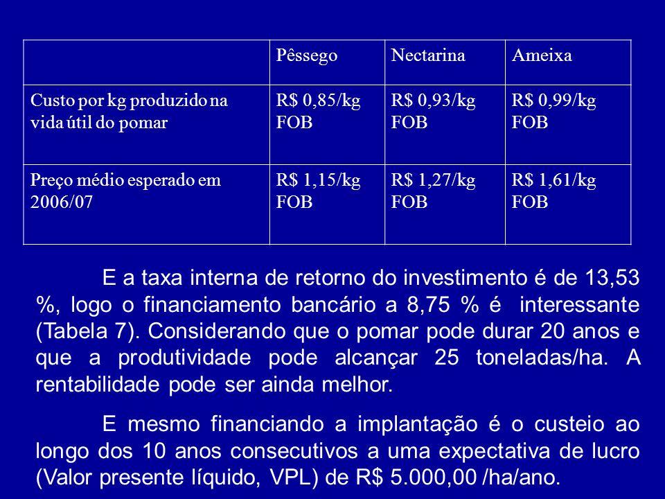 Pêssego Nectarina. Ameixa. Custo por kg produzido na vida útil do pomar. R$ 0,85/kg FOB. R$ 0,93/kg FOB.