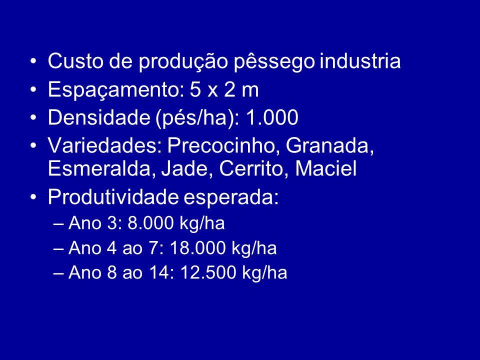 Custo de produção pêssego industria Espaçamento: 5 x 2 m