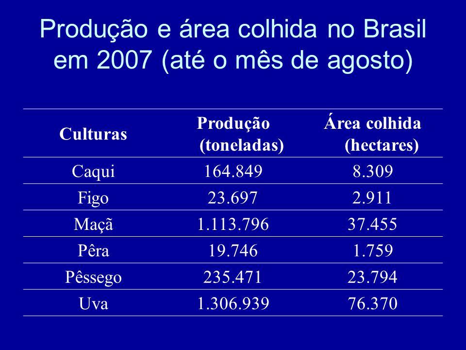 Produção e área colhida no Brasil em 2007 (até o mês de agosto)