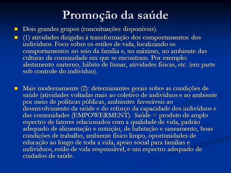 Promoção da saúde Dois grandes grupos (conceituações disponíveis).