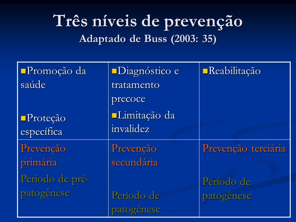Três níveis de prevenção Adaptado de Buss (2003: 35)