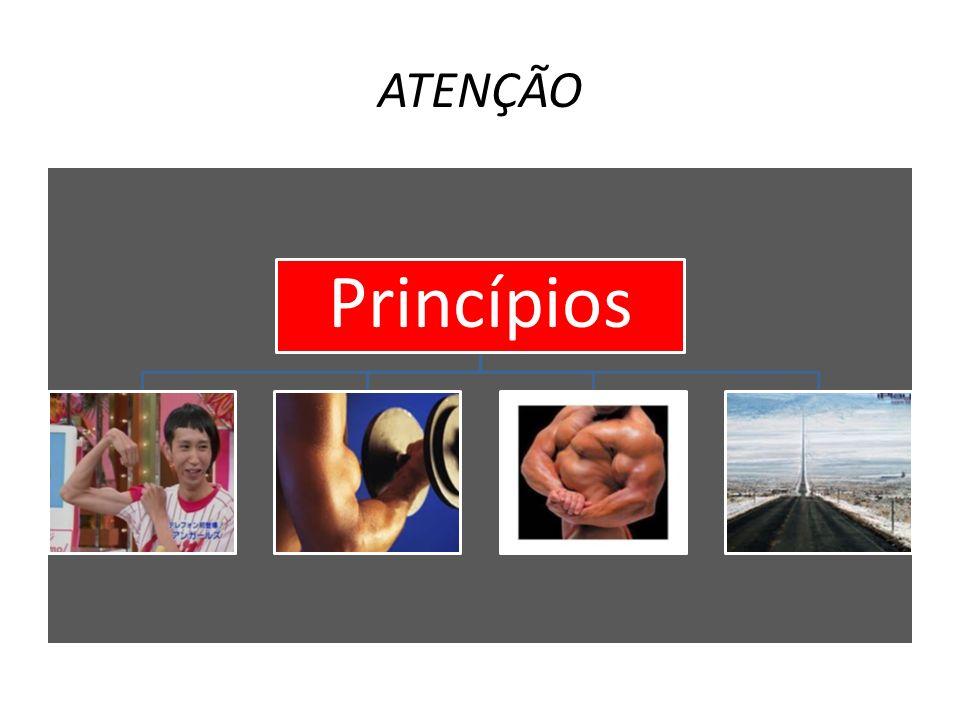 ATENÇÃO Princípios