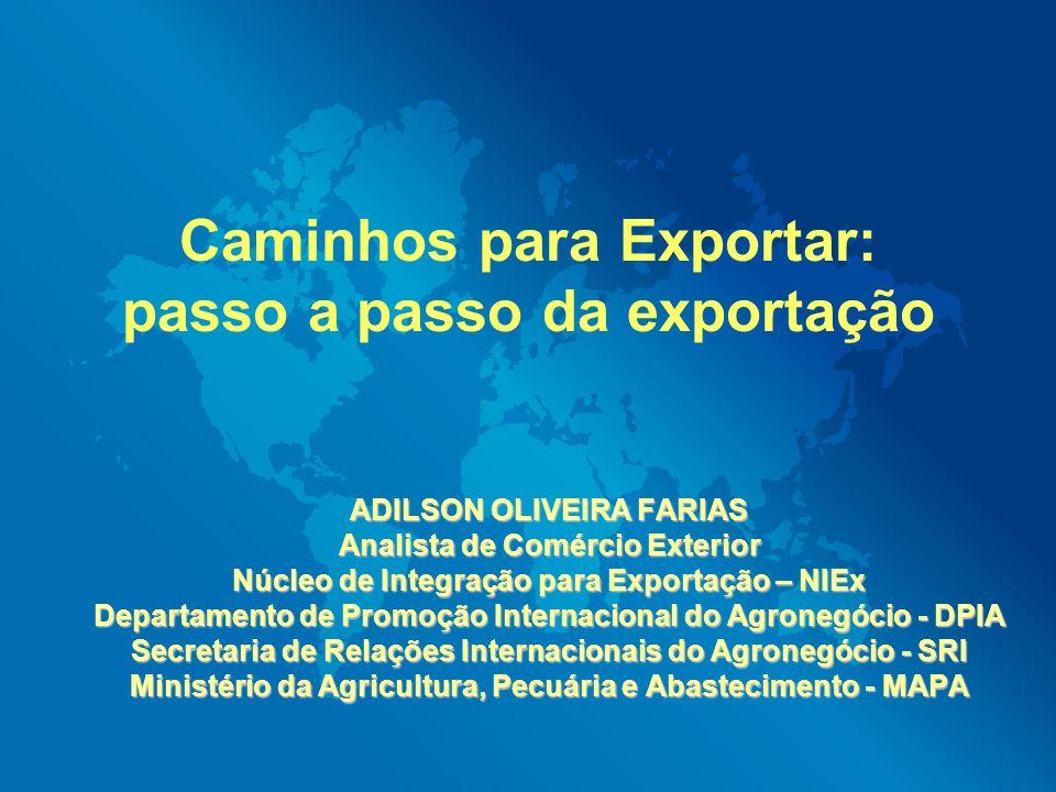 Caminhos para Exportar: passo a passo da exportação