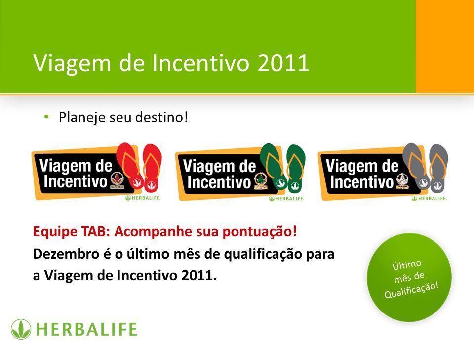 Viagem de Incentivo 2011 Planeje seu destino!