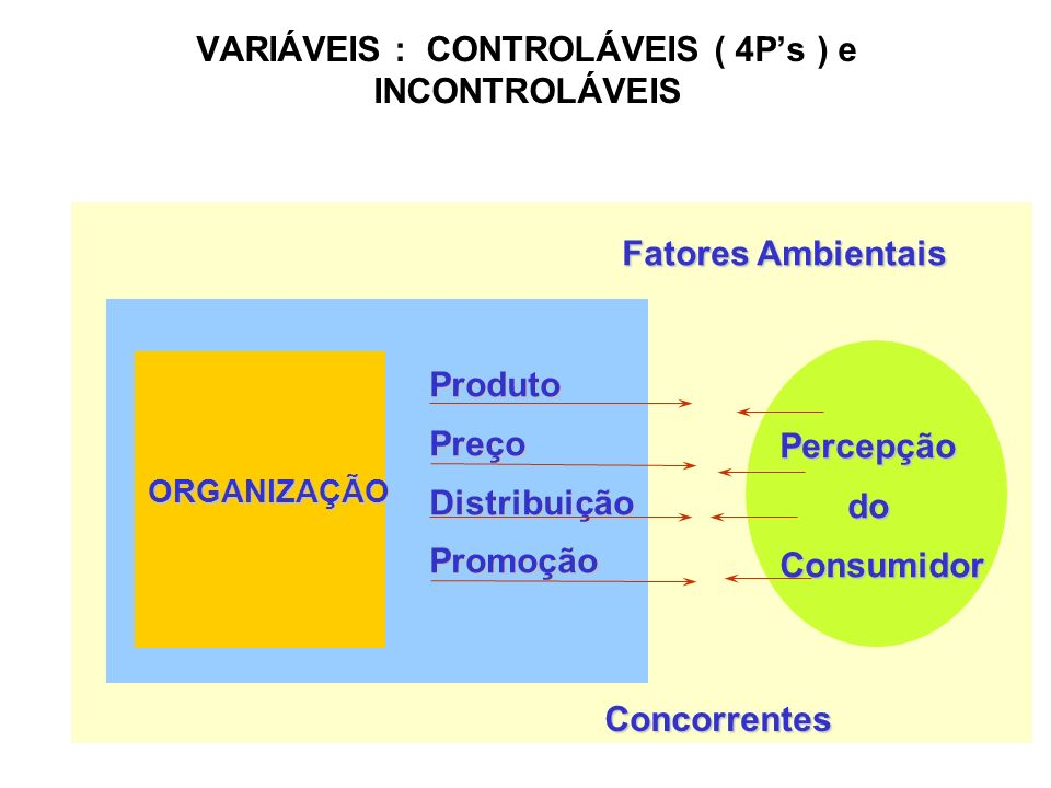 VARIÁVEIS : CONTROLÁVEIS ( 4P's ) e INCONTROLÁVEIS