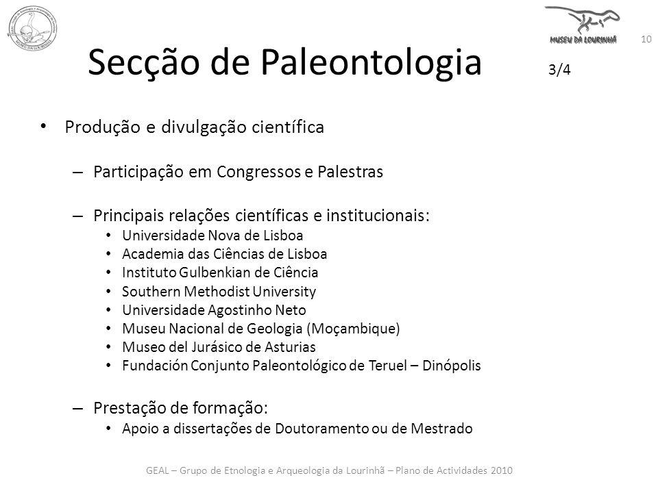 Secção de Paleontologia 3/4