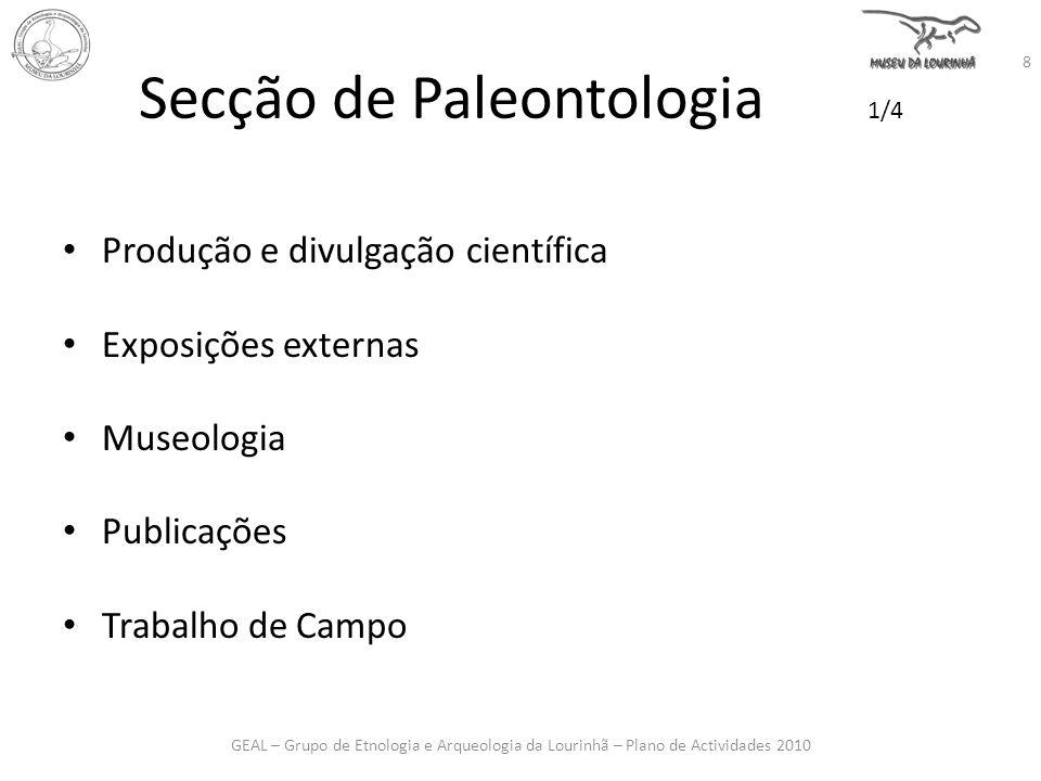 Secção de Paleontologia 1/4