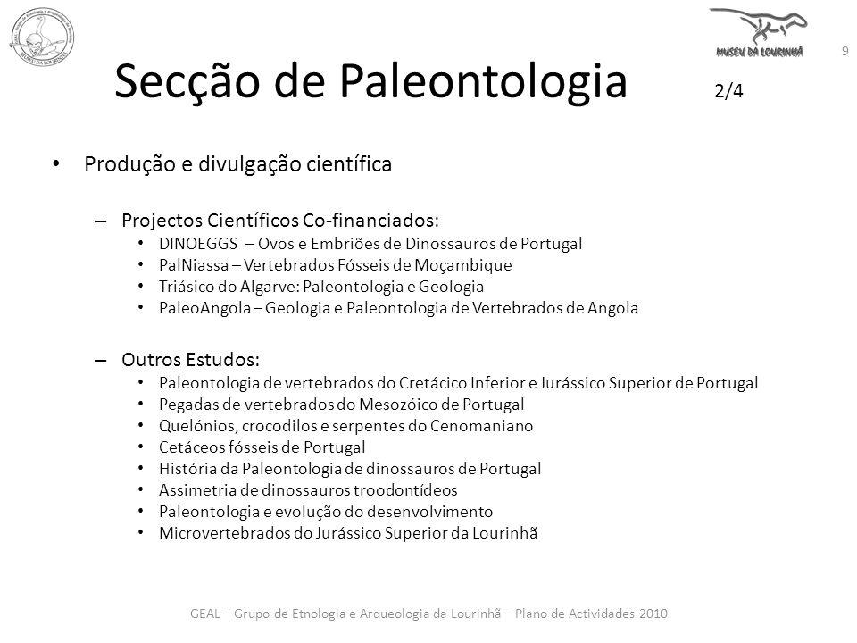 Secção de Paleontologia 2/4