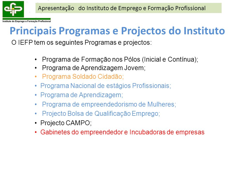 Principais Programas e Projectos do Instituto