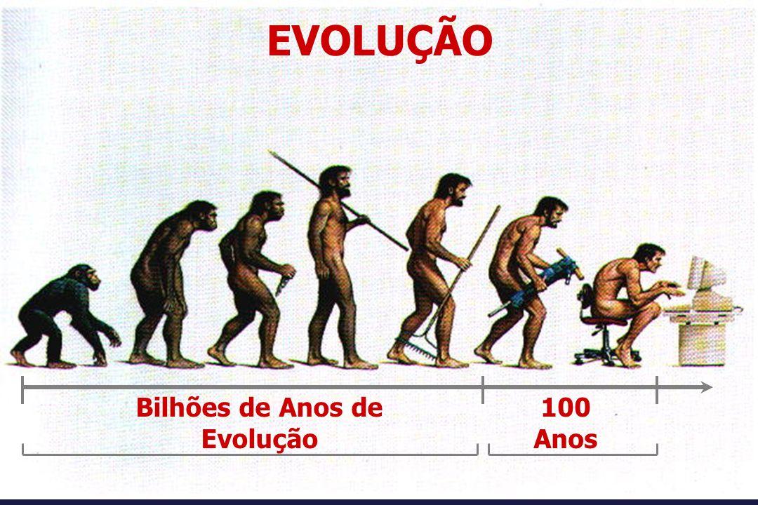 Bilhões de Anos de Evolução