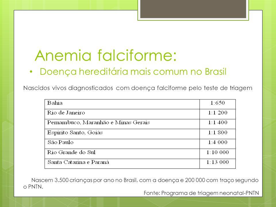 Anemia falciforme: Doença hereditária mais comum no Brasil