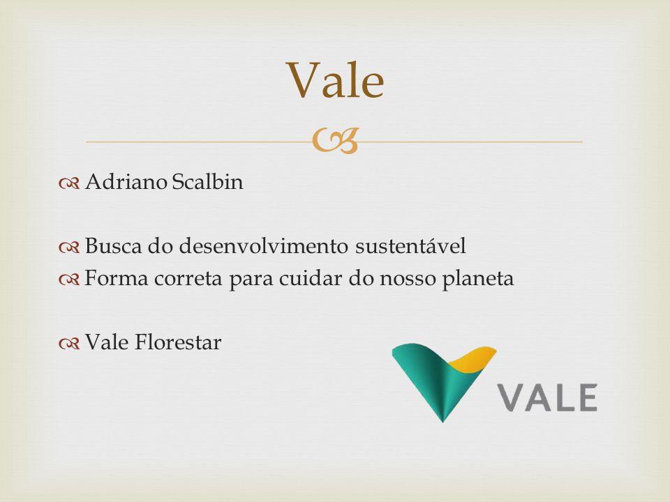 Vale Adriano Scalbin Busca do desenvolvimento sustentável