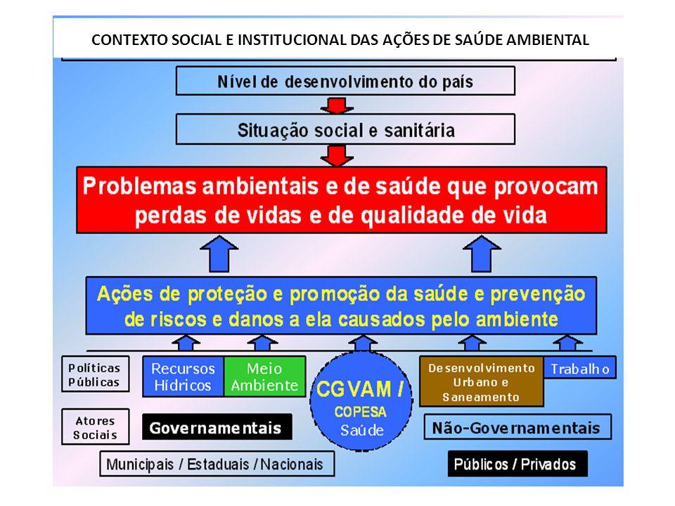 CONTEXTO SOCIAL E INSTITUCIONAL DAS AÇÕES DE SAÚDE AMBIENTAL