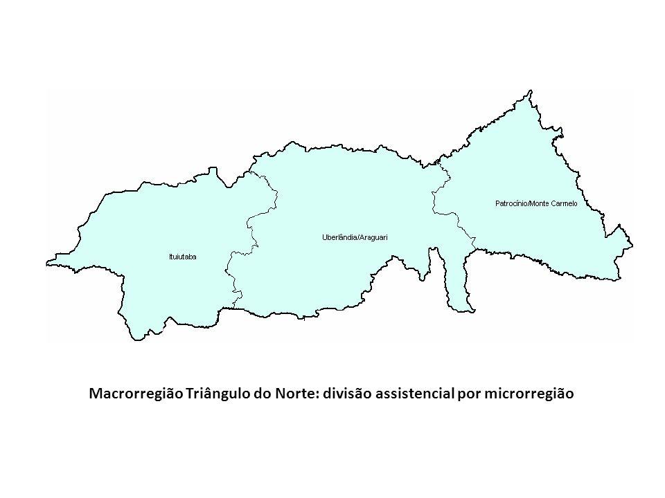Macrorregião Triângulo do Norte: divisão assistencial por microrregião