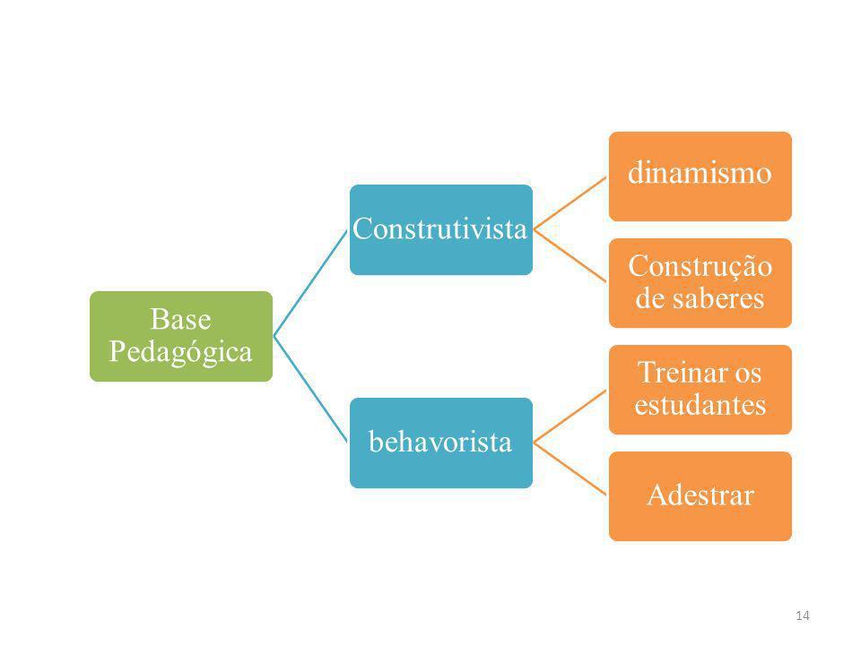 dinamismo Base Pedagógica Construtivista Construção de saberes