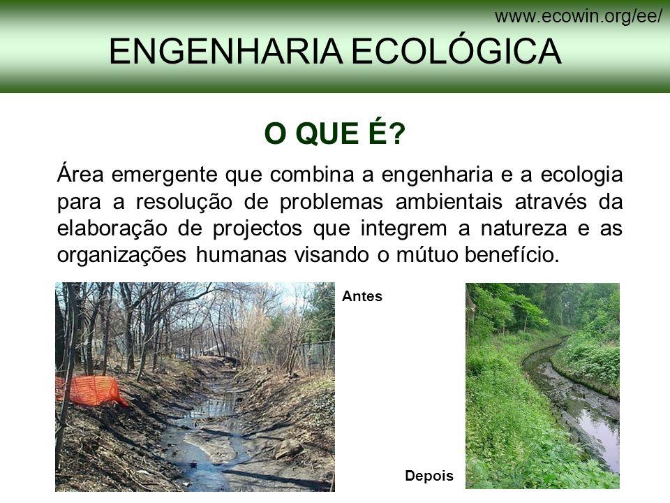 ENGENHARIA ECOLÓGICA O QUE É