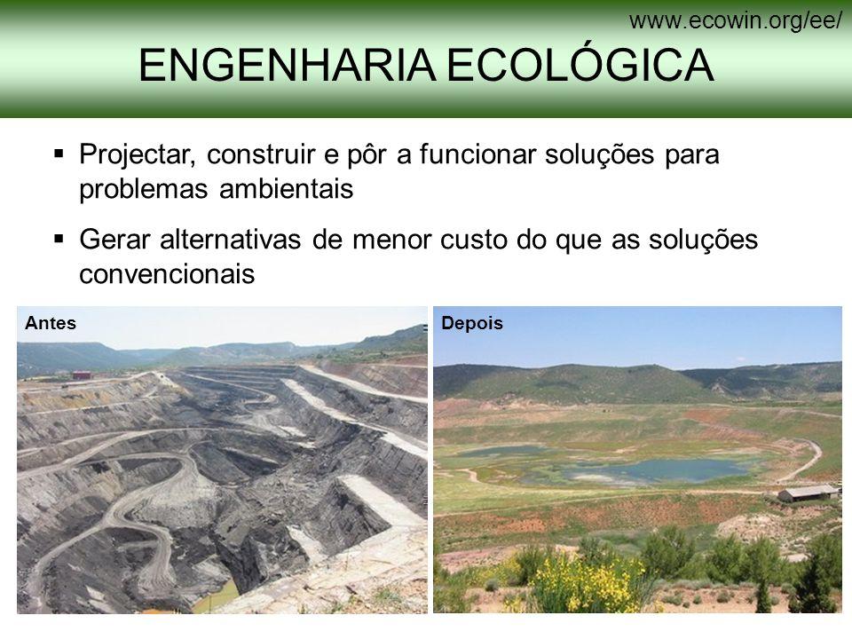 www.ecowin.org/ee/ ENGENHARIA ECOLÓGICA. Projectar, construir e pôr a funcionar soluções para problemas ambientais.