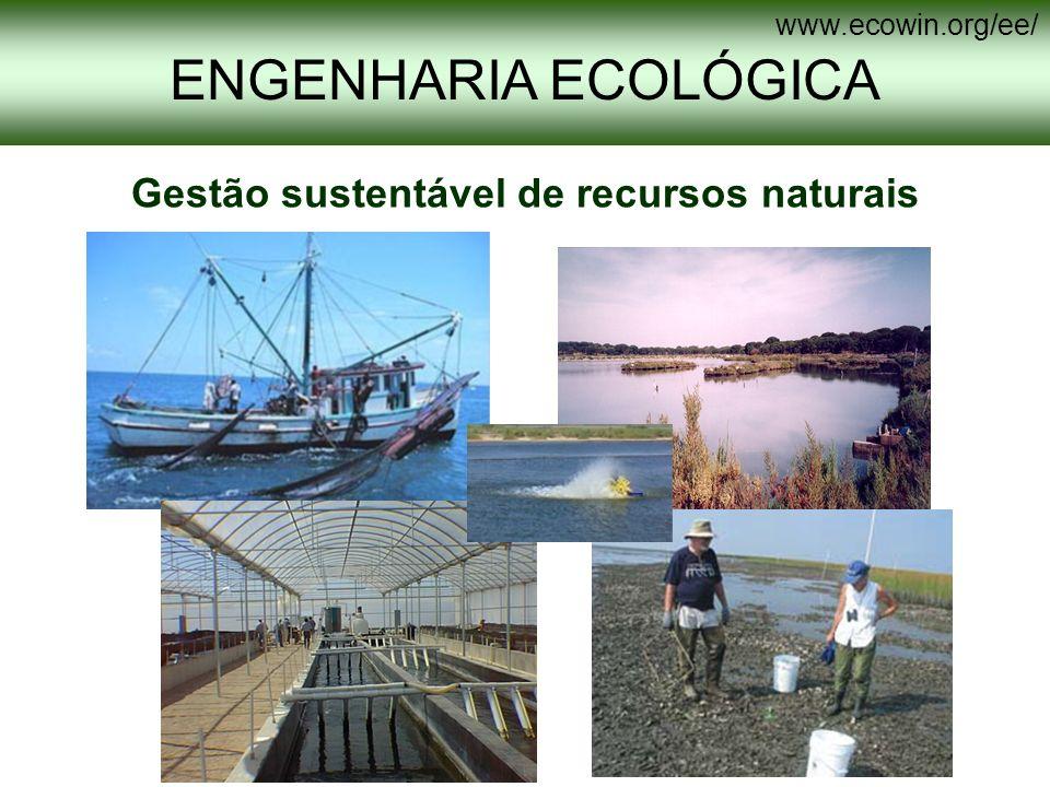 Gestão sustentável de recursos naturais