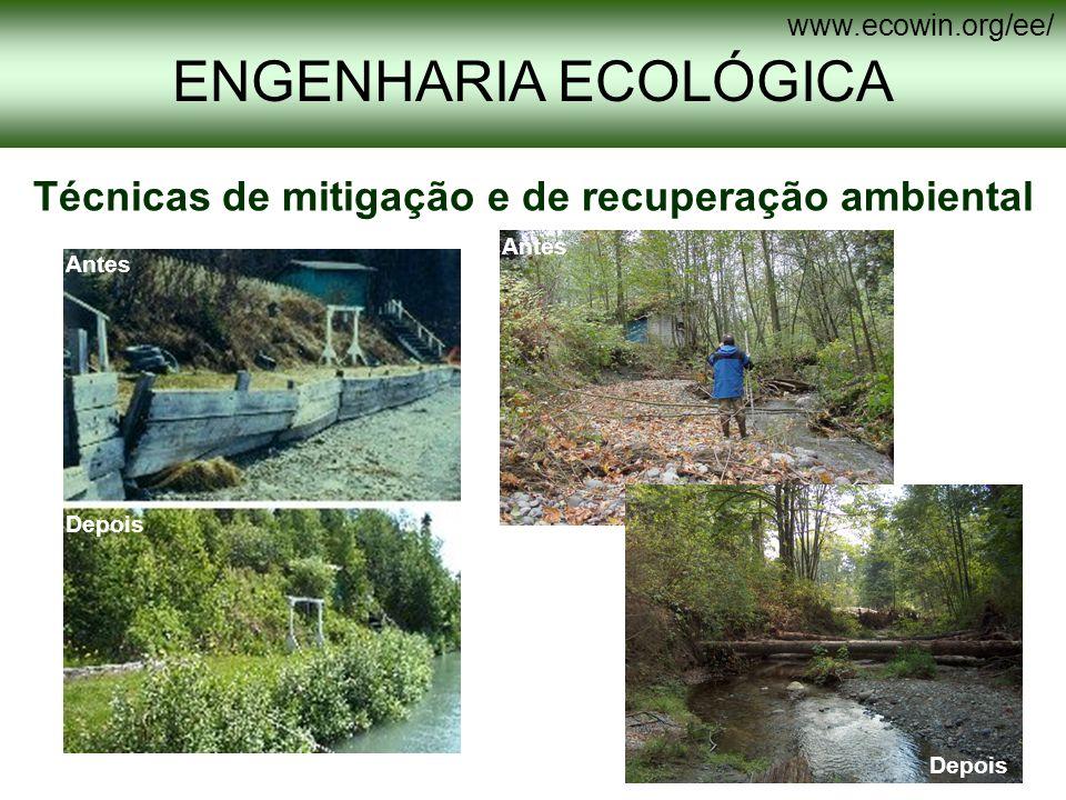 Técnicas de mitigação e de recuperação ambiental