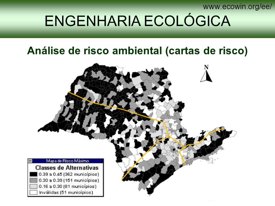Análise de risco ambiental (cartas de risco)