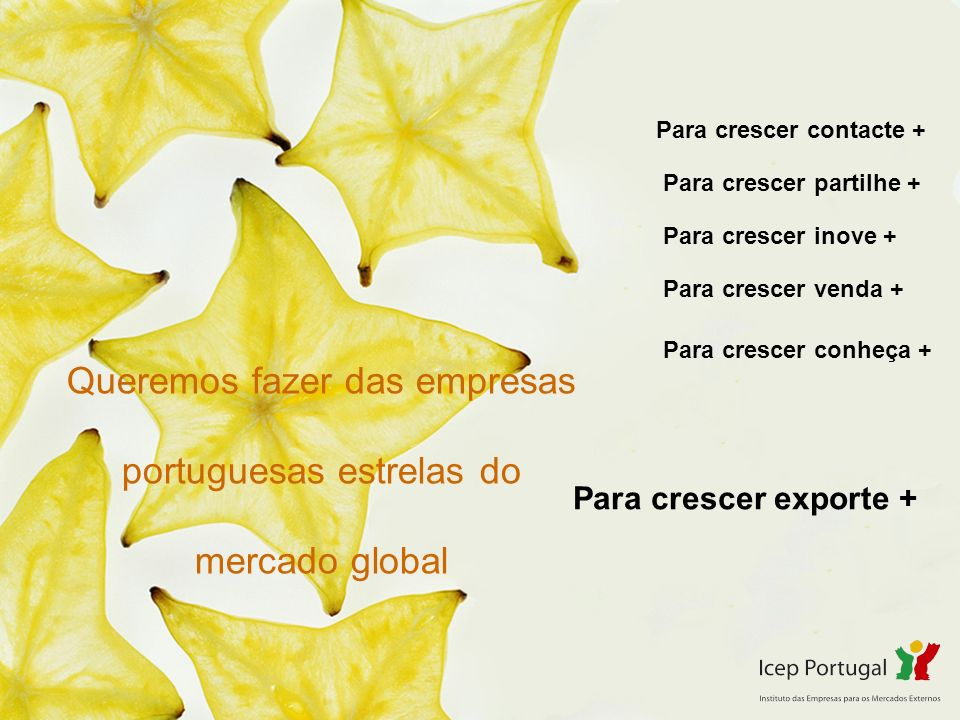 Queremos fazer das empresas portuguesas estrelas do mercado global