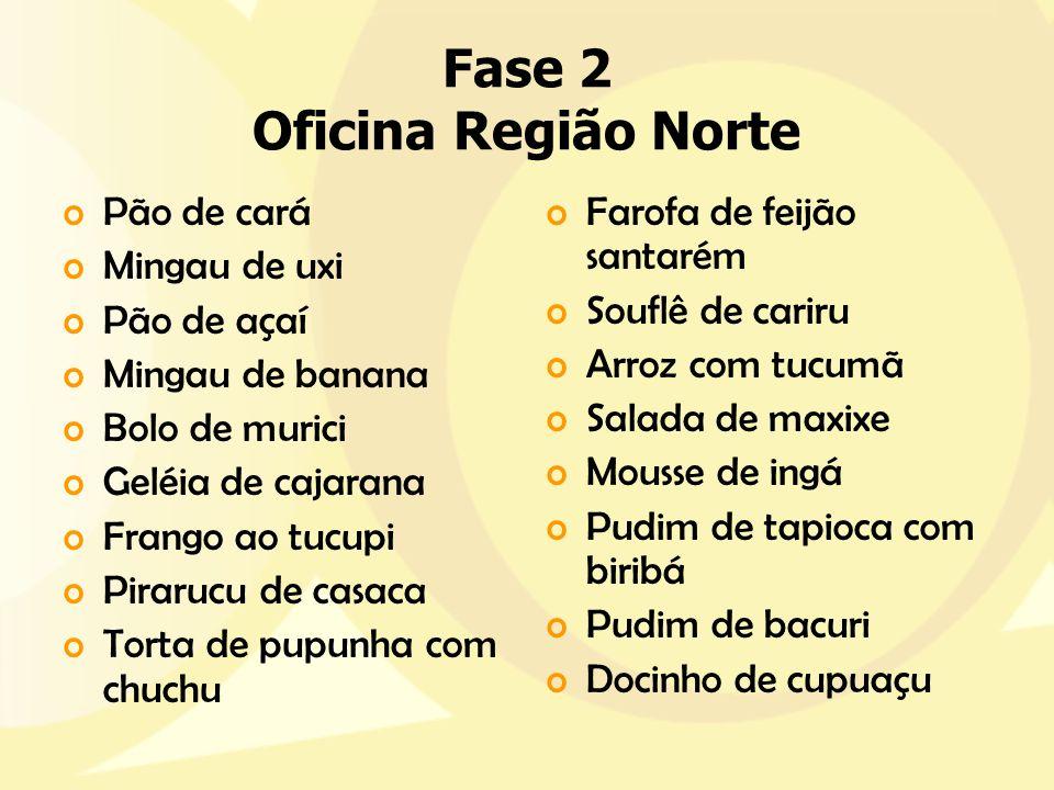 Fase 2 Oficina Região Norte
