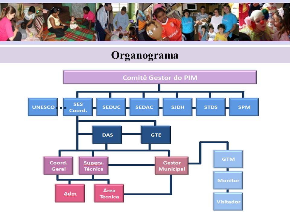 6 6 Organograma Organograma 6