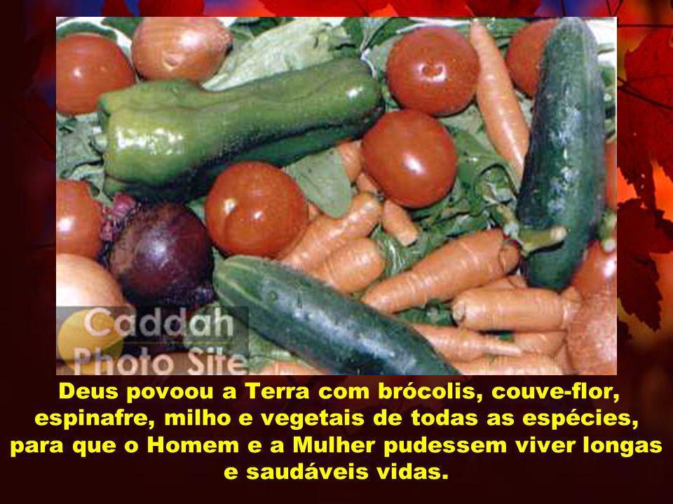 Deus povoou a Terra com brócolis, couve-flor, espinafre, milho e vegetais de todas as espécies, para que o Homem e a Mulher pudessem viver longas e saudáveis vidas.