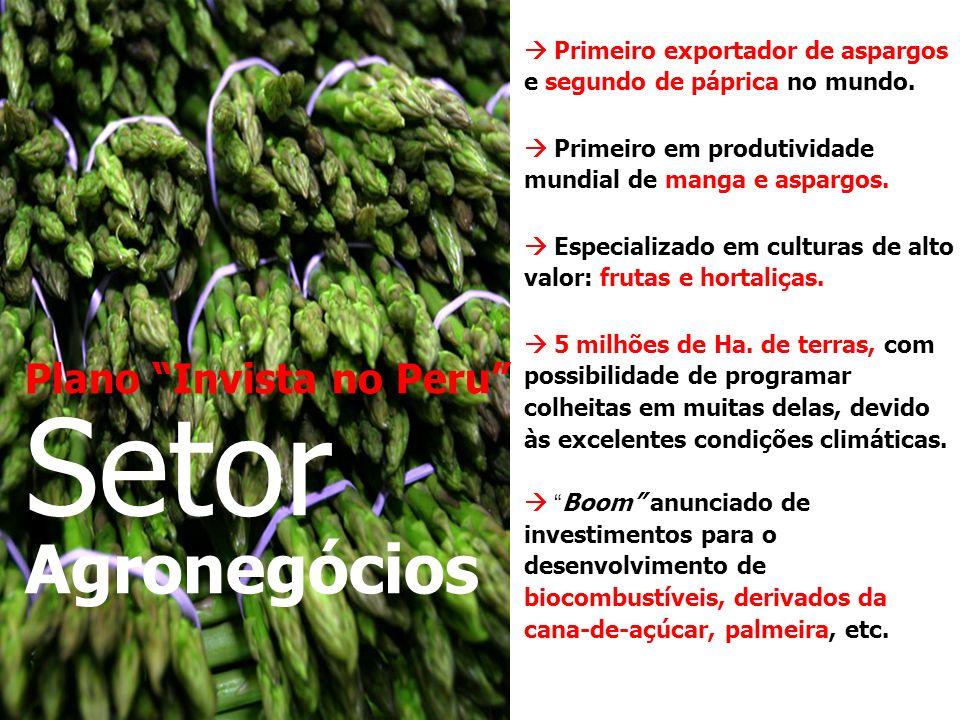 Setor Agronegócios Plano Invista no Peru
