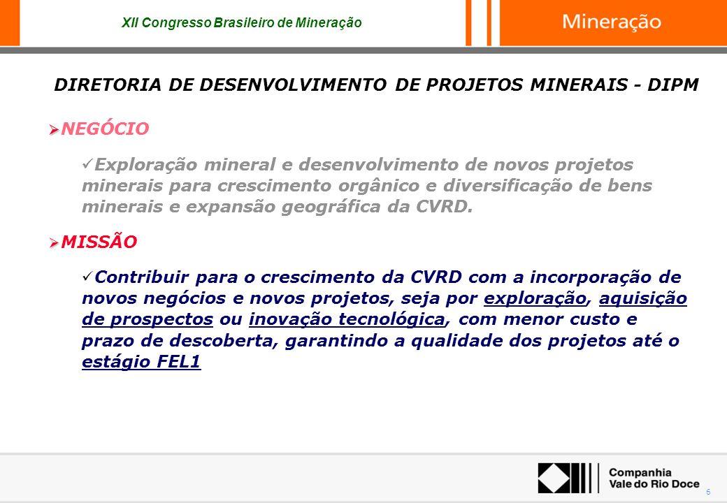 DIRETORIA DE DESENVOLVIMENTO DE PROJETOS MINERAIS - DIPM