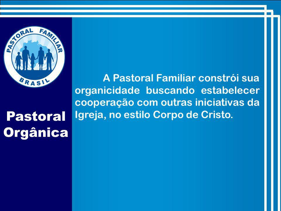 A Pastoral Familiar constrói sua organicidade buscando estabelecer cooperação com outras iniciativas da Igreja, no estilo Corpo de Cristo.
