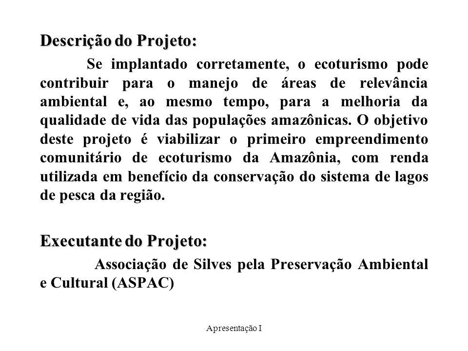 Executante do Projeto: