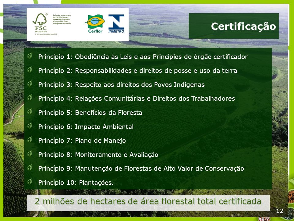2 milhões de hectares de área florestal total certificada