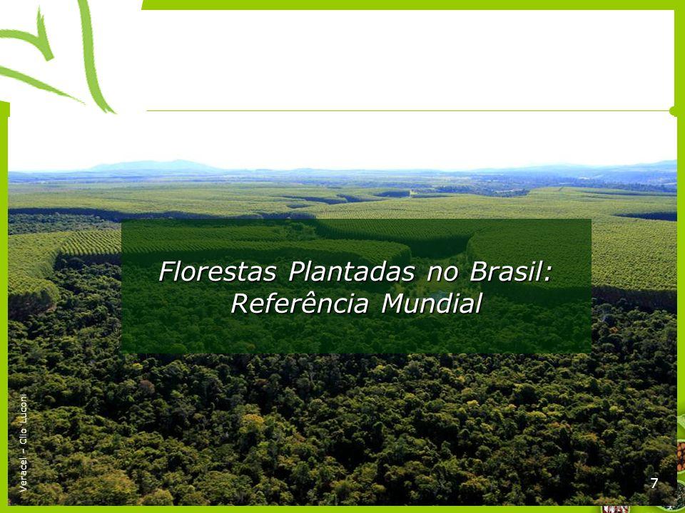 Florestas Plantadas no Brasil: Referência Mundial