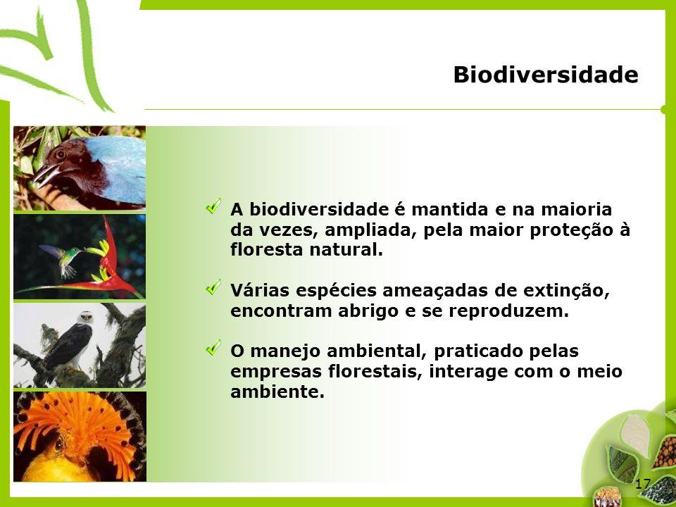 Biodiversidade A biodiversidade é mantida e na maioria da vezes, ampliada, pela maior proteção à floresta natural.