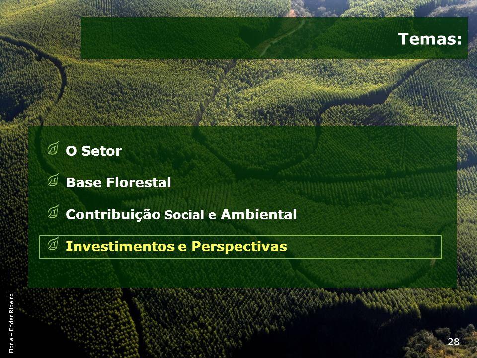 Temas: O Setor Base Florestal Contribuição Social e Ambiental