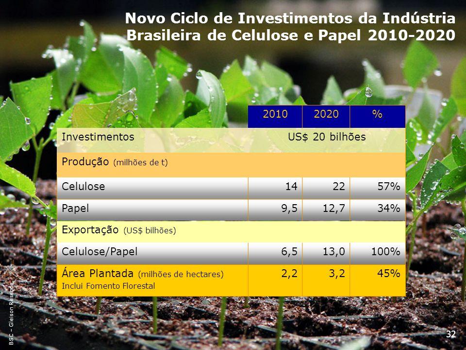Novo Ciclo de Investimentos da Indústria Brasileira de Celulose e Papel 2010-2020