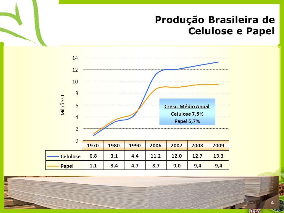 Produção Brasileira de Celulose e Papel