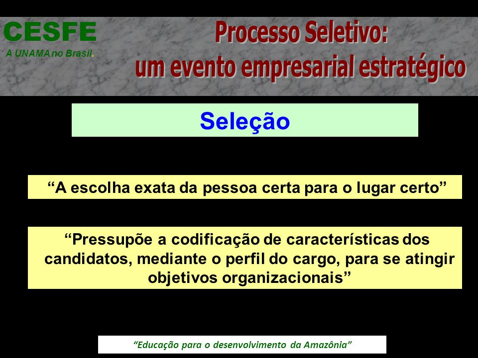 CESFE Processo Seletivo: um evento empresarial estratégico Seleção