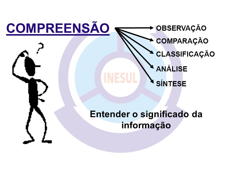 Entender o significado da informação