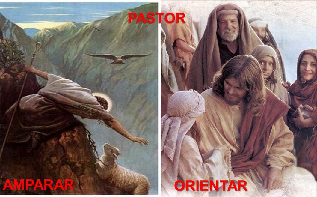 PASTOR AMPARAR ORIENTAR