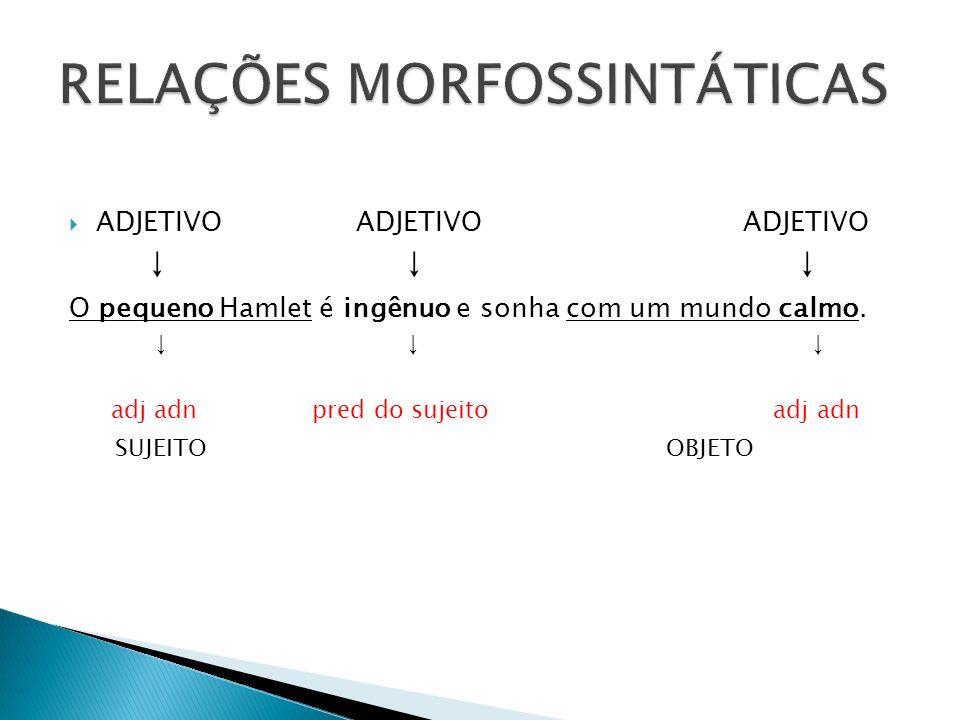 RELAÇÕES MORFOSSINTÁTICAS