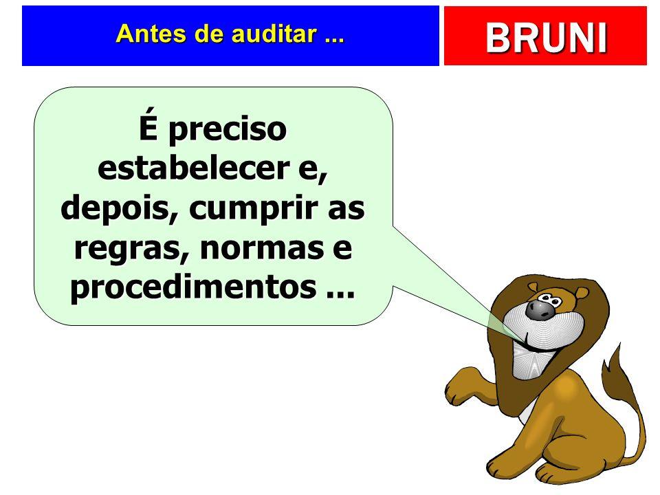 Antes de auditar ... É preciso estabelecer e, depois, cumprir as regras, normas e procedimentos ...
