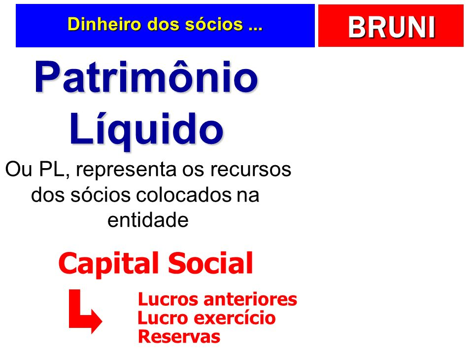 Patrimônio Líquido Capital Social Ou PL, representa os recursos
