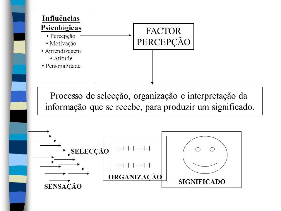 Processo de selecção, organização e interpretação da