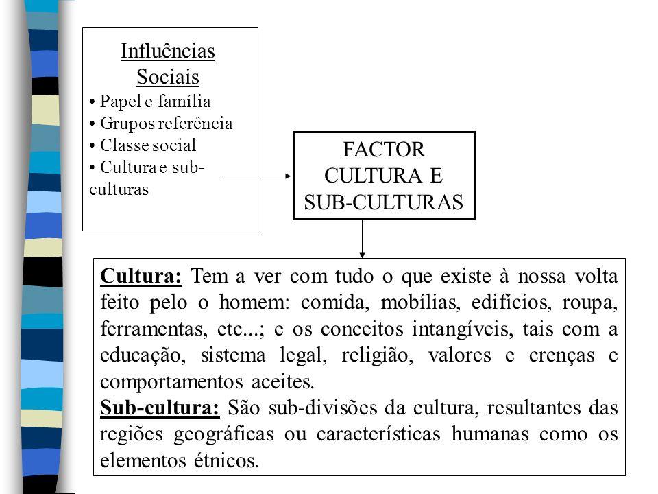 Influências Sociais FACTOR CULTURA E SUB-CULTURAS