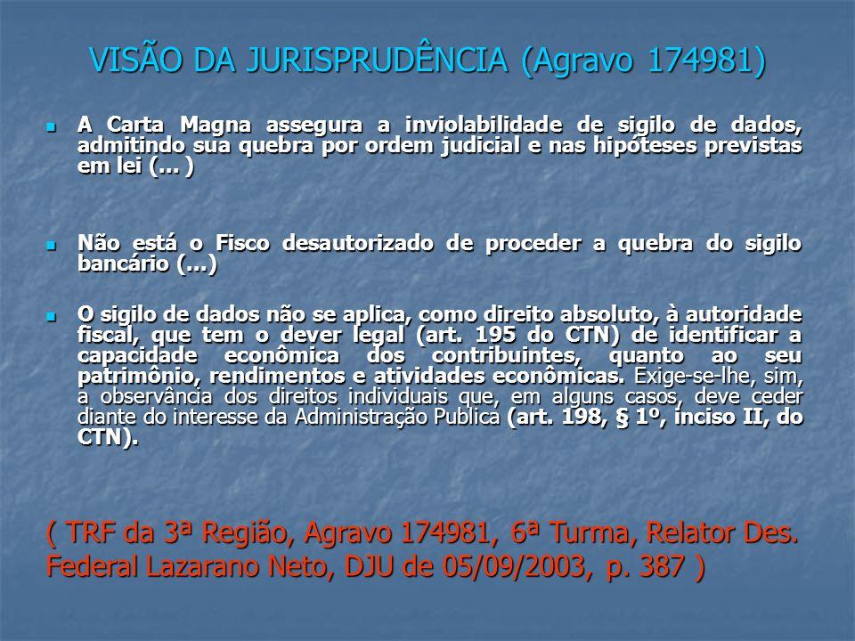 VISÃO DA JURISPRUDÊNCIA (Agravo 174981)