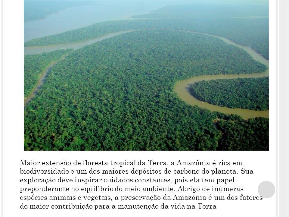 Maior extensão de floresta tropical da Terra, a Amazônia é rica em biodiversidade e um dos maiores depósitos de carbono do planeta.