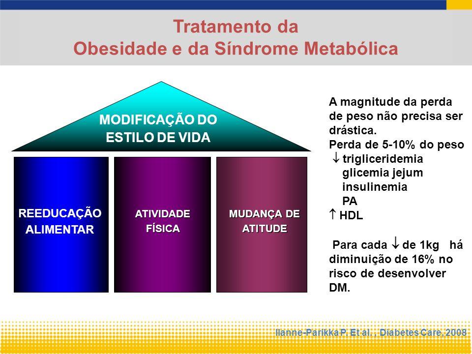 Obesidade e da Síndrome Metabólica
